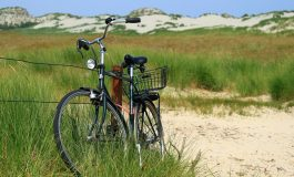 Wycieczka rowerowa do Strumienia