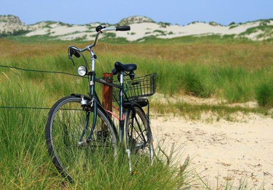 Wycieczka rowerowa do Łąki