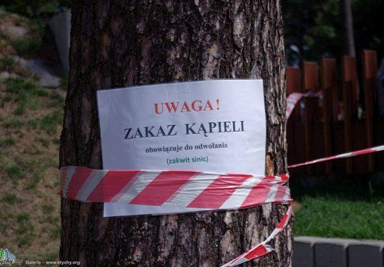 Zakaz kąpieli w Paprocanach – zakwit sinic