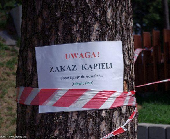 Zakaz kąpieli w Paprocanach - zakwit sinic