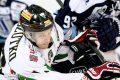 Hokej: GKS Tychy - Stoczniowiec Gdańsk