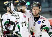 Hokej: GKS Tychy - Comarch Cracovia (2016.12.02) [galeria]