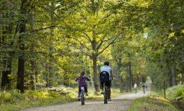 Powstanie ścieżka rowerowa z Tychów do Bierunia
