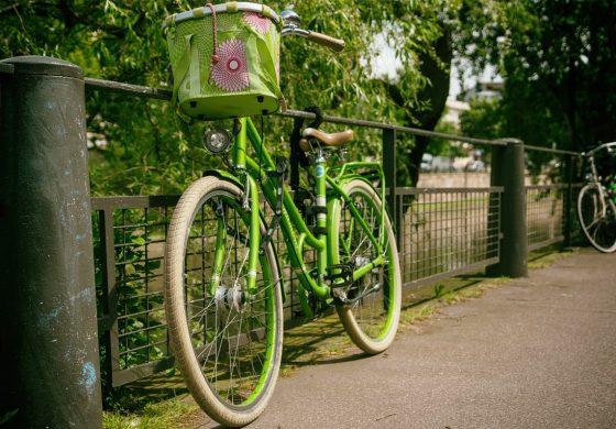 Wycieczka rowerowa na zaporę w Porębie