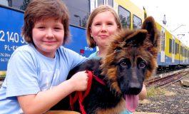 Dzień pasa w Kolejach Śląskich - przez jeden dzień nie będzie trzeba płacić za bilet dla psa