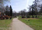 Wycinka krzewów w Parku Niedźwiadków [foto]