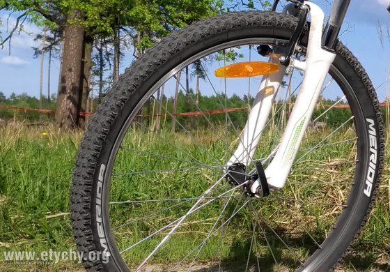 Wycieczka rowerowa na Przełęcz Przegibek