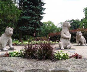TZUK szuka imion dla niedźwiadków