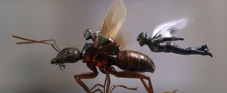 Maraton filmowy ENEMEF: Minimaraton Ant-Man – Konkurs