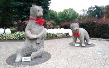 Misie z Parku Niedźwiadków mają imiona [foto]