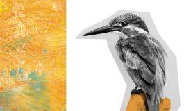 Zaczarowane Ptaki - Rodzinne Warsztaty w Wilkowyjach
