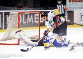 Hokej: GKS Tychy - TatrySki Podhale Nowy Targ (2018.11.16) [galeria]