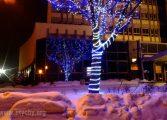 Miejskie urzędy i instytucje w okresie świątecznym. Kto i kiedy świętuje?