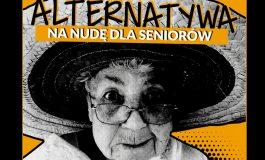 Podusia dla Wnusia - Warsztaty Alternatywa na Nudę dla Seniorów w Wilkowyjach