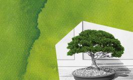 Drzewko szczęścia - warsztaty rodzinne w Klubie Urbanowice MCK