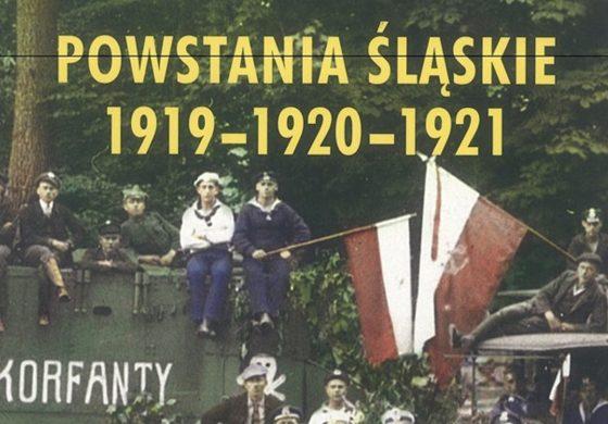 Mozaika Górnośląska – Powstania śląskie wojną polsko – niemiecką w Muzeum Miejskim