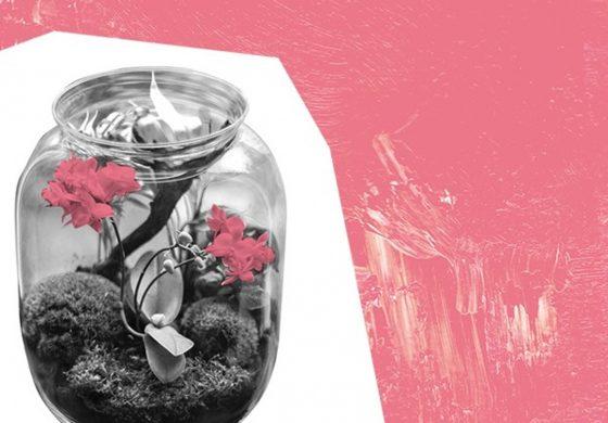 Las w słoiku – Eko Przystanek dla dzieci w Wilkowyjach