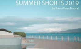 Summer Shorts w MCK Wilkowyje