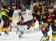 Hokej CHL: GKS Tychy pokonuje Vienna Capitals [foto]