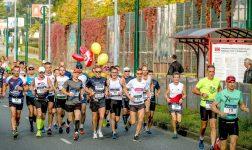Silesia Marathon. W niedzielę utrudnienia w komunikacji miejskiej