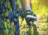 Wycieczka rowerowa do Katowic