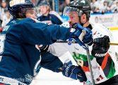 Hokej: GKS Tychy - Lotos PKH Gdańsk (2020.01.12) [galeria]