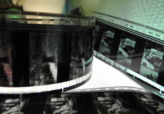 Sztuka X Muzy – Wakacje z kinem w Mediatece