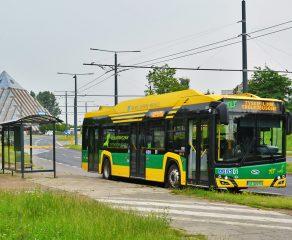 TLT zaprezentują nowe elektrobusy