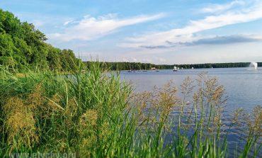 Muzyczne Wieczory nad Jeziorem - Formation-In