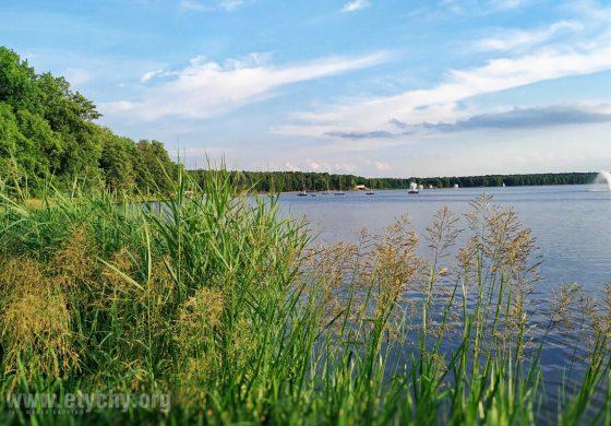 Muzyczne Wieczory nad Jeziorem – Formation-In